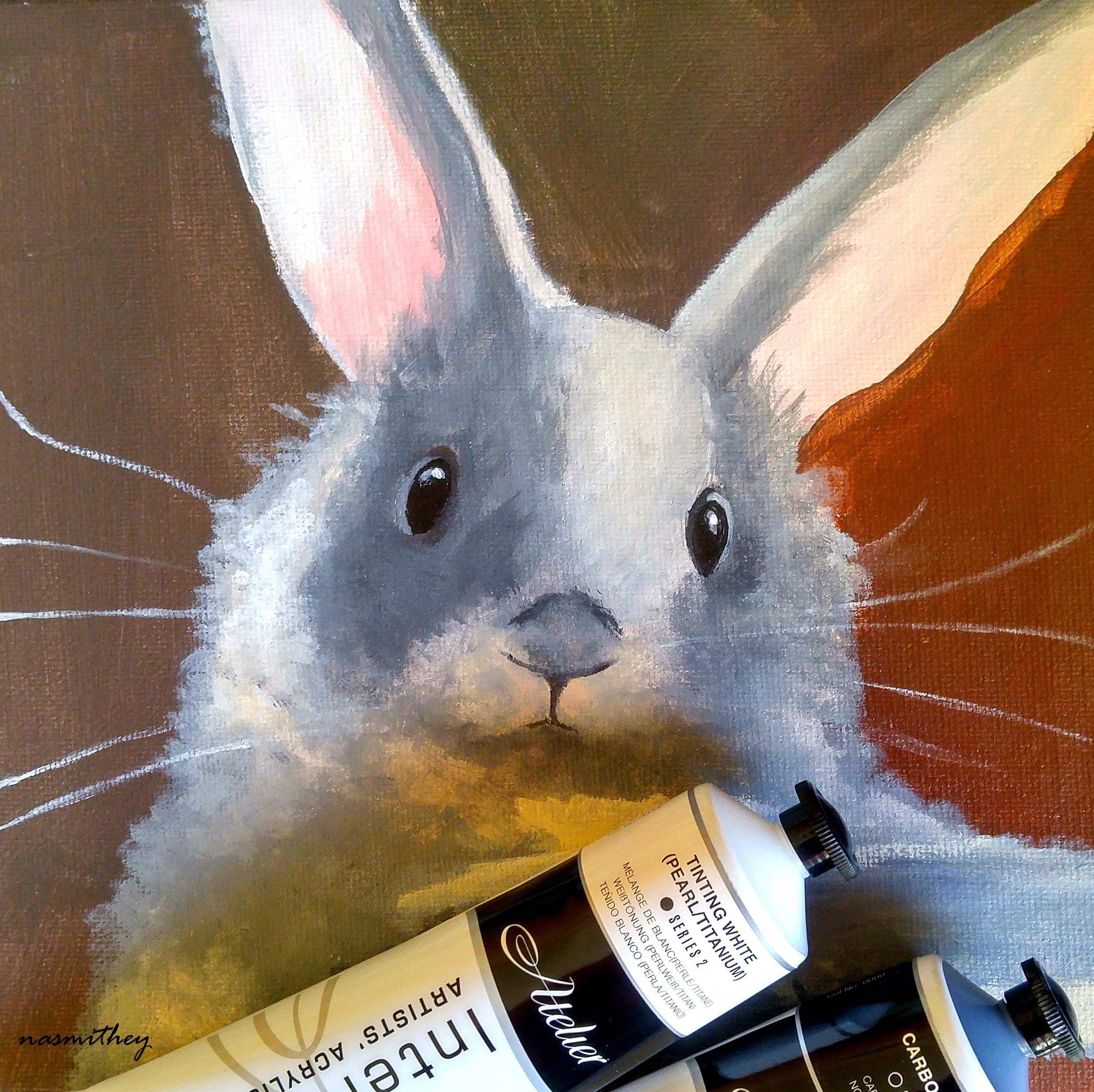 my bunny by paula nasmith
